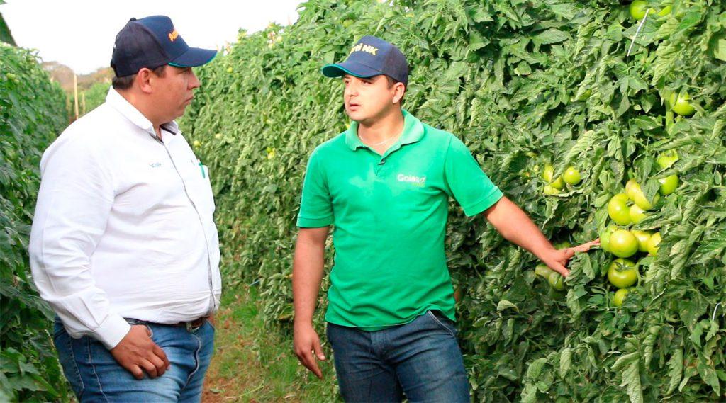 Casa Bugre | Agrivalle apresentam produtos eficientes para fertirrigação